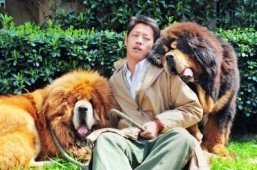 Dog 'sold for $2 million' in China: report