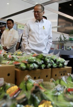 PHL exports up 12.4% in July, 2nd fastest in East and Southeast Asia after China – NEDA