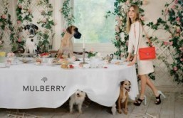 Cara Delevingne & Mulberry collaborate on presentation