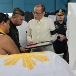 Palace: No whitewash in Fallen 44 probe
