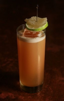 Sipping on summer: Mixologist Jim Meehan's Dark and Stormy