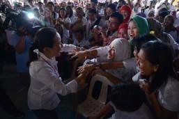 Comelec ratifies Guanzon comment on Poe DQ case