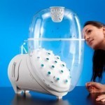 Kitchen appliance lets you grow your own insects for dinner