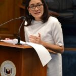 Proposal to seize China assets in the Philippines for WPS damage needs further study — Hontiveros