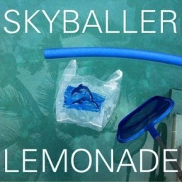 Most blogged artists: Chris Malinchak, Lemonade