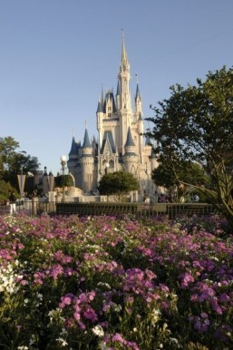 World's most visited theme park for 2014: Magic Kingdom