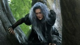 Photo: Meryl Streep's terrifying costume for 'Into the Woods'