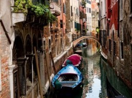 Interest in Venice spikes with Clooney wedding: Trivago