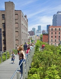 New York's High Line fetes fifth birthday