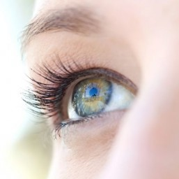 Biologists lift lid on eyelash mystery