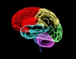 Molecule discovery may lead to improvements in treating depression