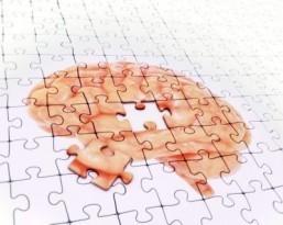 Scientists identify protein key to Alzheimer's treatment