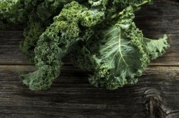 Warnings of possible kale shortage cause ripple of panic among fans