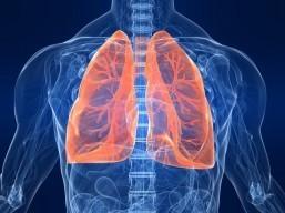 Recurrent pneumonia not common: lung expert