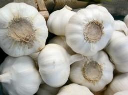 Brazil fights flatulence, with garlic