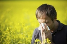 US approves novel remedy for hayfever, pollen allergies