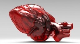 New online tool calculates heart's 'age'