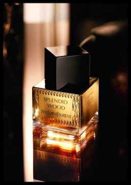 YSL fragrance inspired by precious Middle Eastern essences