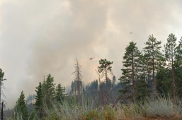 Evacuations of 1,000 people after forest fires near Yosemite